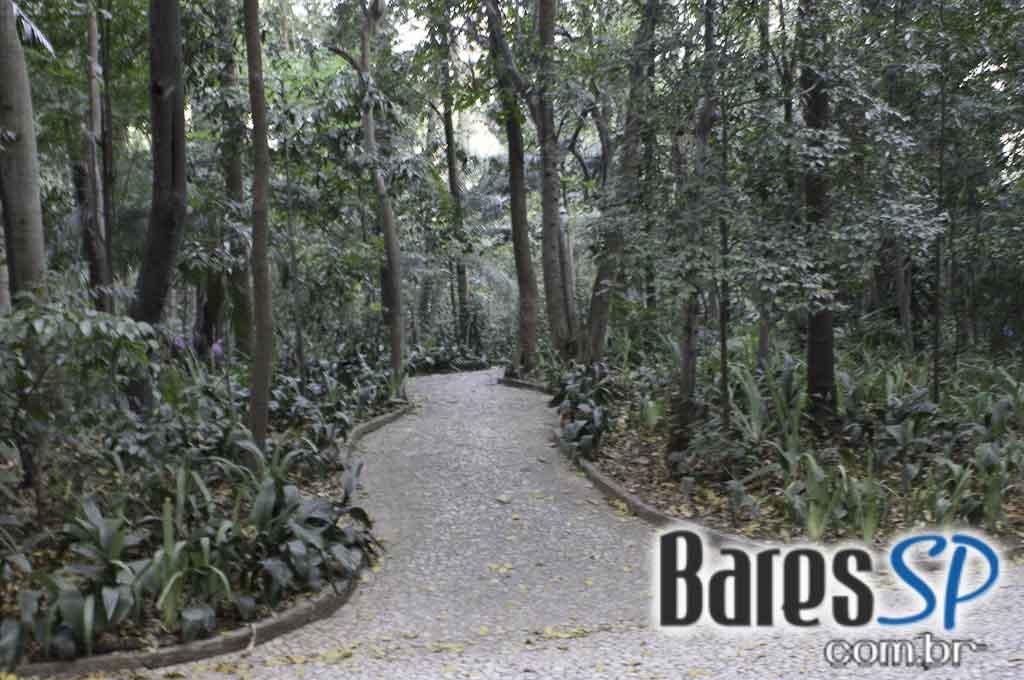 <a href='http://www.facebook.com/sharer.php?u=http://www.baressp.com.br/cursos/fotos/1075&picture=http://www.baressp.com.br/admin/btd_cursos/fotos/1075_46.jpg' target='_blank'><img src='/images/icones/social64x64/facebook.png' alt='Facebook BaresSP' title='Compartilhe esta foto' width='40' /></a>&nbsp;<a href='http://twitter.com/share?text=Compartilhe&amp;lang=pt%26url=http://www.baressp.com.br/admin/btd_cursos/fotos/1075_46.jpg' target='_blank'><img src='/images/icones/social64x64/twitter.png' alt='Twitter BaresSP' title='Compartilhe esta foto' width='40' /></a>&nbsp;<a href='http://www.baressp.com.br/admin/btd_cursos/fotos/1075_46.jpg download><img src='/images/icones/download_icon.png' alt='Download' title='Baixar imagem' width='33' style='margin-bottom:4px;' /></a>