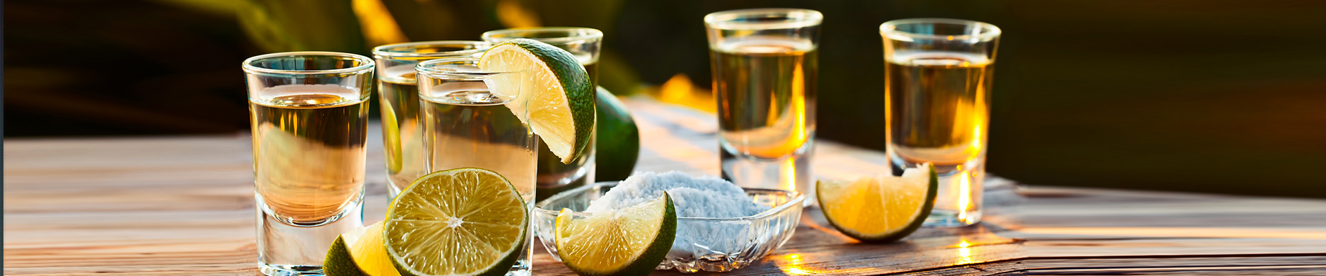 Workshop de Tequila