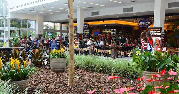 Cruzeiros Bar Grand Plaza Shopping BaresSP 570x300 imagem