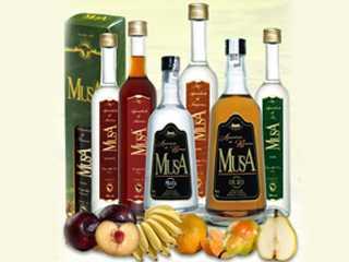 MUSA - Aguardentes de frutas/bares/fotos/musa.jpg BaresSP