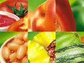 Maxis Alimentos e Distribuidora BaresSP