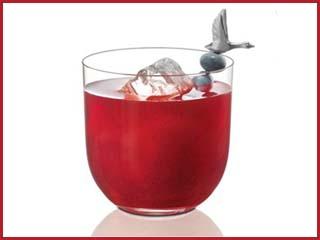 Embaixador da Grey Goose ensia a fezer o drink Canada Goose  Eventos BaresSP 570x300 imagem