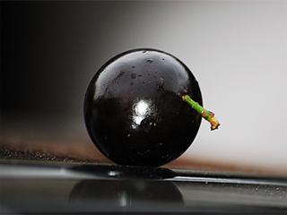 Jabuticaba: fruta traz inúmeros benefícios a saúde e é opção para diversas receitas Eventos BaresSP 570x300 imagem