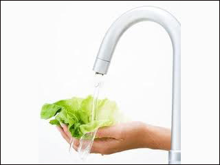 Falta de higiene fecha 607 restaurantes em São Paulo  Eventos BaresSP 570x300 imagem