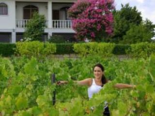Malbec do Brasil comemora premiação de Vinhos da Quinta Mendes Pereira de Portugal Eventos BaresSP 570x300 imagem