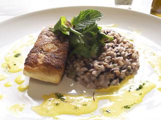 Restaurante Nou amplia cardápio Eventos BaresSP 570x300 imagem