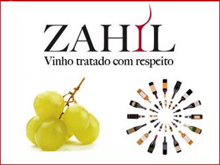 Importadora de vinhos promove o Festival de Vinhos Raros Eventos BaresSP 570x300 imagem