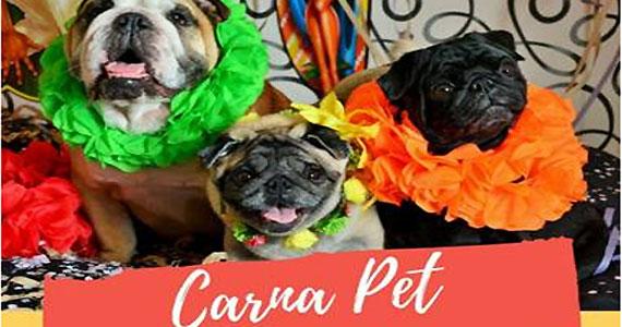 Pós-Carnaval reúne animais de estimação em Pinheiros Eventos BaresSP 570x300 imagem