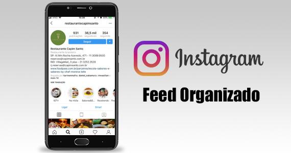 Feed Organizado