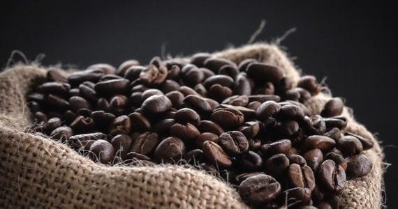Produção do Café