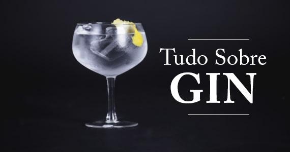 Tudo sobre gin Eventos BaresSP 570x300 imagem