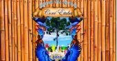 Agenda de eventos Ensaio da Escola de Samba Nenê de Vila Matilde para o Carnaval 2017 acontece aos domingos /eventos/fotos2/thumbs/Nene_Vila_Matilde.jpg BaresSP