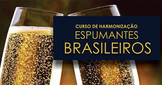 Sommelier Silvia Mascella Rosa ensina a harmonizar espumantes brasileiros na Vinícola Góes Eventos BaresSP 570x300 imagem