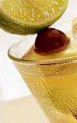 drink drinks coquetéis Whisky Sour